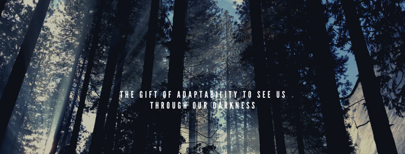 The Gift of Adaptability to See Us Through Our Darkness