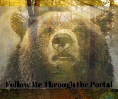 Follow Me Through the Portal